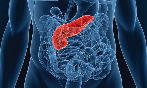 Разрушение клеток поджелудочной железы всегда сопровождается спазмами, которые свидетельствуют о наличии тяжелого заболевания
